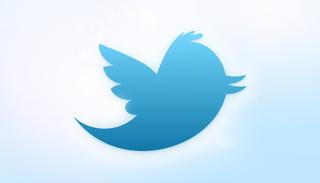 Morgenwelt87_Twitter_new_bird